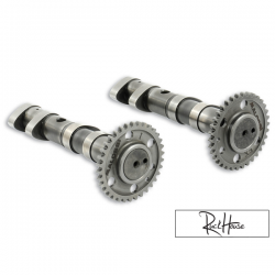 Camshaft Malossi Double Power