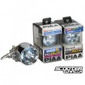 Front Light Bulb set PIAA for Zoomania Honda Ruckus