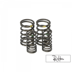 Titanium Valve Spring Taida Upgraded (2V)